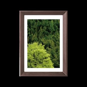 Joplin乔普林 画框(标准20寸)