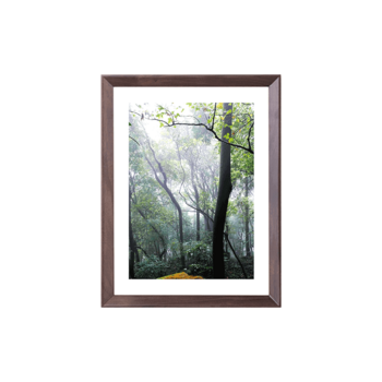 Joplin乔普林 画框(标准16寸)